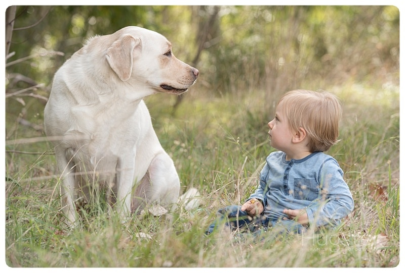 Blonde little boy looking at a white dog