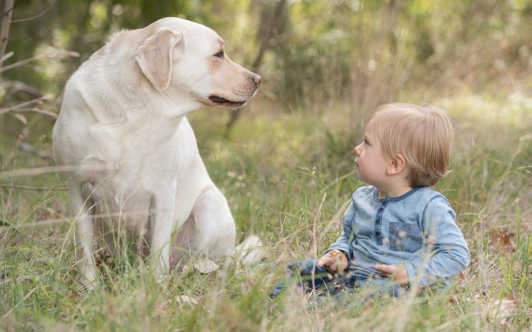 Including your dog in a family portrait session